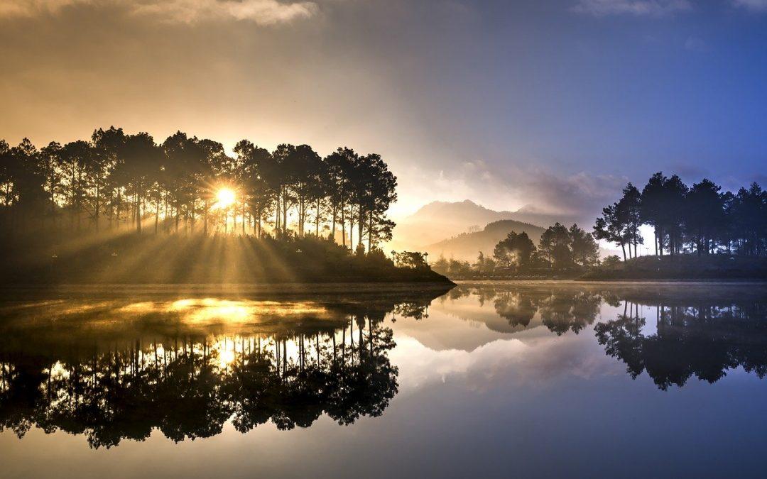 Reflektion ökar din medvetenhet och ger dig fler val